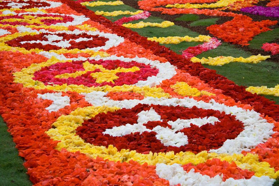 Мир цветов ковров